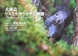 北海道 リスとナキウサギの季節