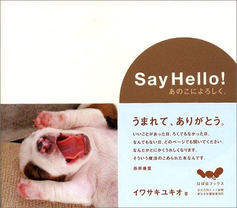 Say Hello! あのこによろしく。
