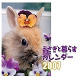 うさぎと暮らすカレンダー 2007 (2007)