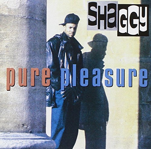 Shaggy - Pure Pleasure - Zortam Music