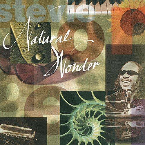 Stevie Wonder - Best of the 80