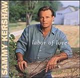album art to Labor of Love