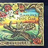 album art to Everclear