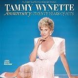 album art to Anniversary: Twenty Years of Hits
