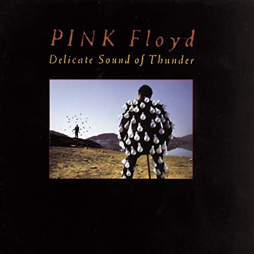 Pink Floyd - Delicate Sound Of Thunder (Dis - Zortam Music