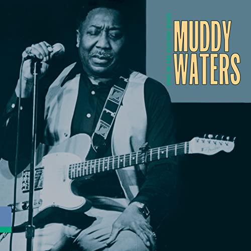 Muddy Waters - King of the Electric Blues - Zortam Music
