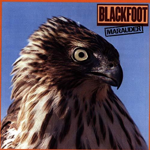 Blackfoot - Diary Of A Working Man Lyrics - Lyrics2You