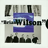 album art to Brian Wilson