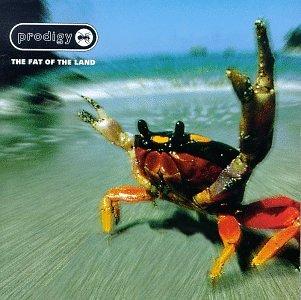 Prodigy - Fat of the Land - Zortam Music