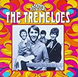 Copertina di album per The Best of the Tremeloes