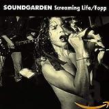 album art to Screaming Life