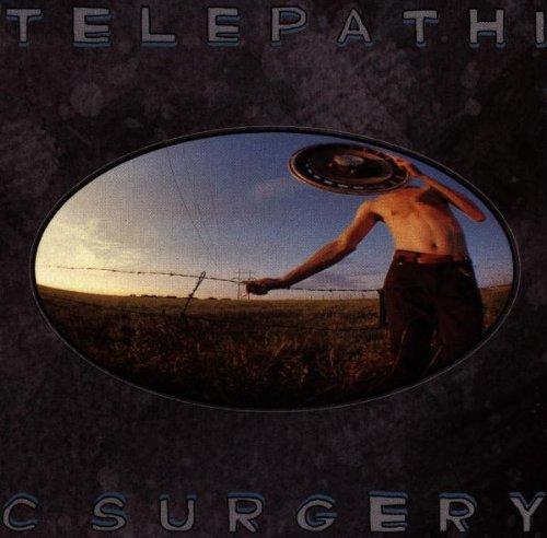 The Flaming Lips - Telepathic Surgery - Zortam Music