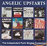 Copertina di The Independent Punk Singles Collection