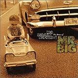 BIG,BIGGER,BIGGEST! The Best Of MR.BIG
