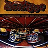 album art by The Waterboys