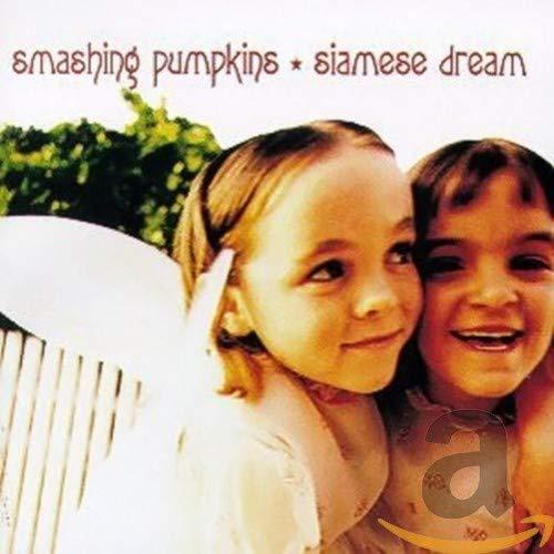The Smashing Pumpkins - Silverfuck Lyrics - Zortam Music