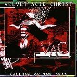 album art to Calling Ov the Dead Beta