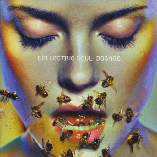 Collective Soul - Needs Lyrics - Zortam Music