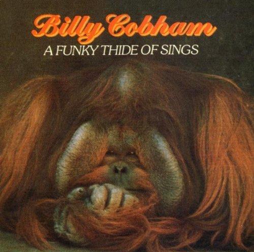 Billy Cobham - A Funky Thide Of Sings - Zortam Music