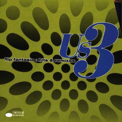 Us3 - Flip Fantasia - Hits & Remixes - Zortam Music