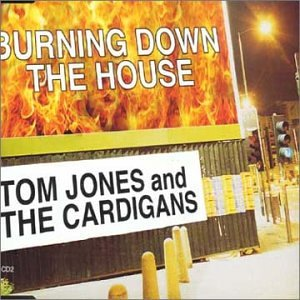 Tom Jones - Burning Down the House - Zortam Music
