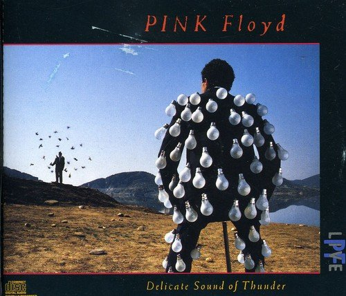 Pink Floyd - Delicate Sound Of Thunder (Cd1 - Zortam Music