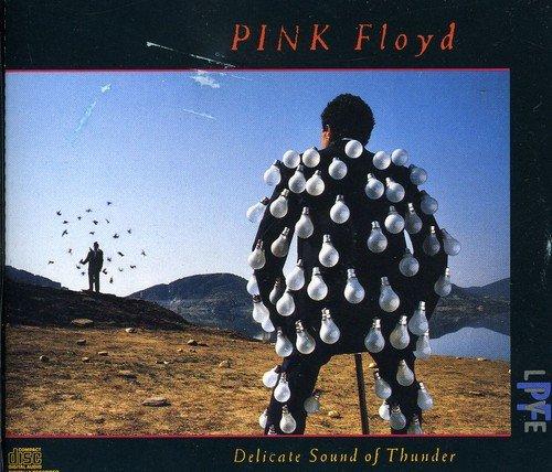 Pink Floyd - Delicate Sound Of Thunder (Cd2 - Zortam Music
