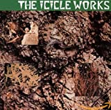 album art to The Icicle Works