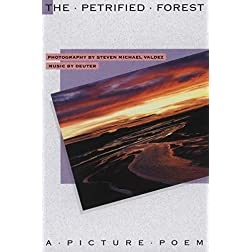 The Petrified Forest: A Picture Poem
