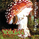 album art to Fungus Amongus