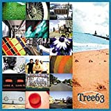 album art to Tree63