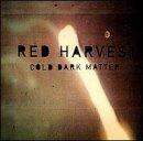 album art to Cold Dark Matter