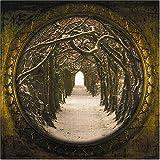 album art to The Secret Kingdom
