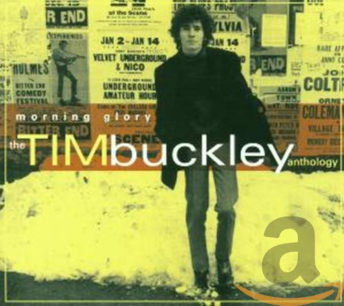 Tim Buckley - Morning Glory, The Tim Buckley Anthology (Disc 1) - Lyrics2You