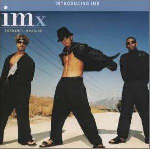 IMx - introducing imx - Zortam Music