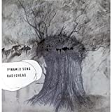 album art to Pyramid Song (disc 2)