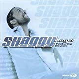 album art by Shaggy