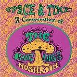 Cover von Space and Time: A Compendium of the Orange Alabaster Mushroom