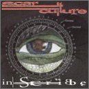 album art by Scar Culture