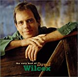 album art to The Very Best of David Wilcox