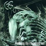 album art to Walking on Phantom Ice