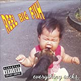 album art to Everything Sucks EP