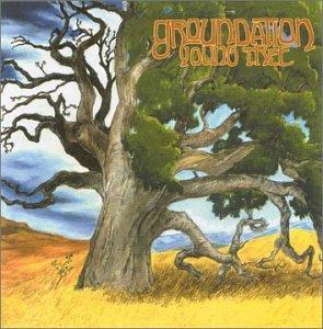 Groundation - Young Tree - Zortam Music