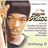Capa de Reggae Max
