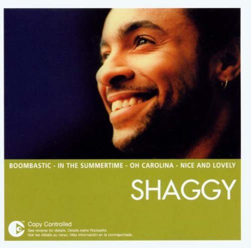 Shaggy - The Essential - Zortam Music