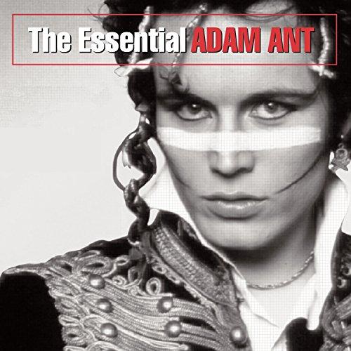 ADAM ANT - Essential Adam Ant, The - Zortam Music