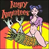 angry amputees   she said    lyrics for an mp3