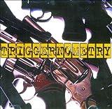 album art to Triggernometry