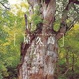 屋久島~ネイチャー・サウンド・ギャラリー