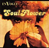 album art to Soul Flower